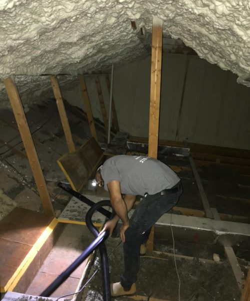 insulation clean up